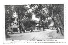 COQ SUR MER - Avenue Marie Henriette - De Haan