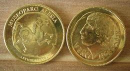 Medaille Museoparc Alesia Vercingetorix Arthus Bertrand Skrill Paypal Bitcoin OK - Arthus Bertrand