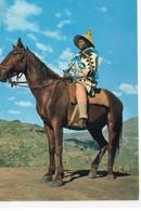 Afrique Du Sud Basutoland Un Fier Cavalier Chevaux Cheval - Südafrika