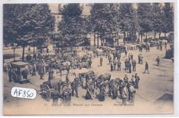 LILLE- LE MARCHE AUX CHEVAUX - Lille
