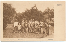 INDONESIE , Buitenzorg, Java - Botanical Gardens - Indonésie
