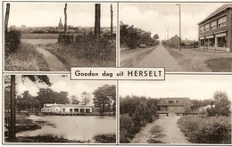Goedendag Uit Herselt( 4 Zichten) - Herselt