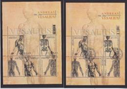 Mapje Gestempeld Vesalius Postuitgifte - Cartes Souvenir