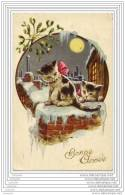 Chatons Au Clair De Lune - Chats