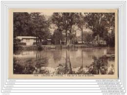 91 - LOZERE SUR YVETTE - Vue Sur Le Lac Et La Buvette - Autres Communes