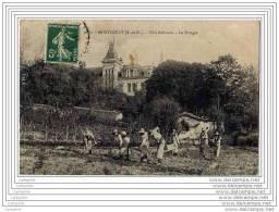 95 - MONSOULT - Villa Bethanie - Le Potager (jardiniers En Activite Avec Brouette ) - France