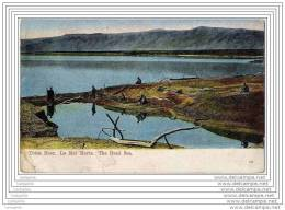 JORDANIE OU ISRAEL - Totes Meer - La Mer Morte - The Dead Sea - Jordanie