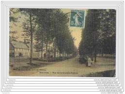 80 - CHAULNES - Rue De La Gande Avenue  (toilee En Couleur) - Chaulnes