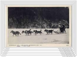 USA - Adirondack Taxi - Lake Placid N.Y. - Dogsled - Traineau A Chiens - Adirondack