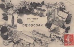 D29 - Bricnogan -  Souvenir  - Achat Immédiat - Brignogan-Plage