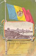 OLD POSTCARD ROMANIA PODUL DE LA CERNAVODA - Romania