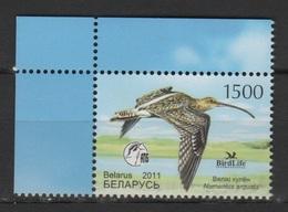Belarus 2011 Wießrussland Mi 849 Bird Of The Year: Curlew (Numenius Arquata) / Vogel Des Jahres: Großer Brachvogel MNH - Kranichvögel