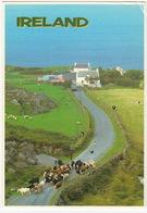 Ireland - Cattle, Sheep, Dog, Farm And Truck -  (17 X 12 Cm.) - John Hinde - Ierland