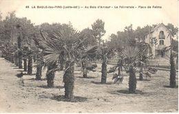 (44) Loire Atlantique - CPA - La Baule-Escoublac - La Baule Sur Mer - Au Bois D'Amour - La Palmeraie - Place De Reims - La Baule-Escoublac