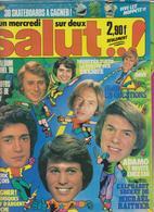 SALUT ! - N° 17 DU 17 AU 27 AVRIL 1977 - SYLVIE-JOHNNY-ENRIQUE-ADAMO-ALAN-DAVE ETC... - FRAIS PORT INCLUS POUR LA FRANCE - Musique
