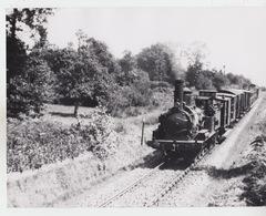 PHOTO ORIGINALE 24X18 / TRAIN LOCOMOTIVE - Treni