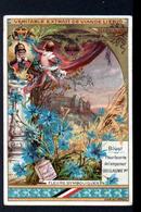 CHROMO LIEBIG , S 379, Fleurs Symboliques, Bleuet ( Bluet), Fleur Favorite De L'empereur Guillaume 1er - Liebig