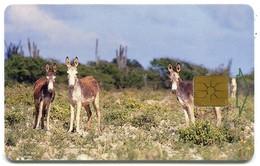 Bonaire - Telefonia Bonairano AN-BON-TBO-0007B - Donkeys (Chip GEM1B White) - Antilles (Netherlands)