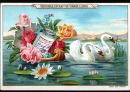 CHROMO LIEBIG , S 380, Fleurs, Oiseaux Et Papillons, Cygnes - Liebig