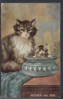 Animals Postcard - Cat & Kitten - Mother And Son    DC1574 - Katten
