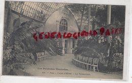 64- PAU - PALAIS D' HIVER LE PALMARIUM - BELLE CARTE PRECURSEUR - Pau
