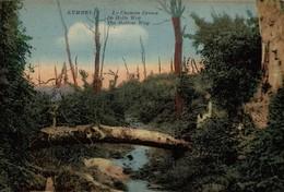KEMMEL  LE CHEMIN CREUX - Heuvelland