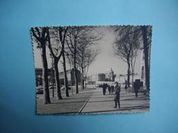 PHOTOGRAPHIE  VERSAILLES - 78 - Une Vue De La Ville  -   1963  -   8,7  X  11,4  Cms -  Yvelines - Versailles