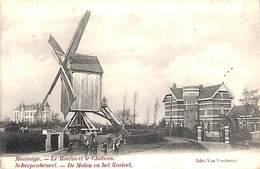 Scherpenheuvel - Montaigu -  De Molen En Het Kasteel (animation, Edit. Van Vinckeroy, 1906) - Scherpenheuvel-Zichem