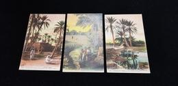 3 CP Afrique Du Nord Scènes Et Types Un Marabout Dans L'oasis Puits Artésiens Enfants Se Baignant Dans Un Oued - Autres