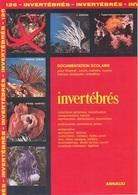 DOCUMENTATION SCOLAIRE ARNAUD N° 126 INVERTÉBRÉS LIVRET NEUF DE 16 PAGES En COULEUR FERMETURE LIBRAIRIE - SITE Serbon63 - Books, Magazines, Comics