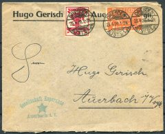 1920 Germany Auerbach Esperanto Dresden Cover - Allemagne