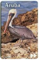 AW-SET-LG-0015 - Pelican (Printed Reverse) 511B - Aruba