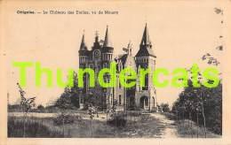 CPA OTTIGNIES LE CHATEAU DES ETOILES VU DE MOUSTY - Ottignies-Louvain-la-Neuve