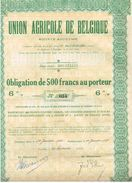 Obligation  Ancienne - Union Agricole De Belgique - Titre De 1922 - Titre N°033 - Agriculture