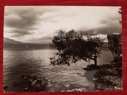 OHRID, MACEDONIA, ORIGINAL VINTAGE POSTCARD - Macédoine