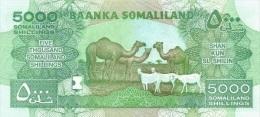 SOMALILAND P. 21a 5000 S 2011 UNC - Sonstige – Afrika