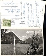 566038,Lugano Monte Bre Schiff Segelschiff - Segelboote