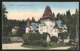 AK Sinaia, Castelul Pelisor Si Floraia - Rumänien