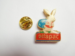 Beau Pin's , Alfapac , Lapin - Animals