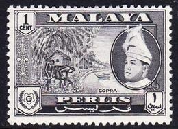 Malaysia-Perlis SG 29 1957 Raja Putra, 1c Black, Mint Hinged - Perlis