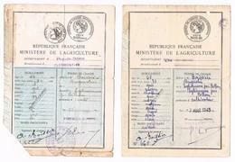 D 63 - EGLISENEUVE Près BILLOM - 2 PERMIS DE CHASSE - 1939- 1945- TIMBRES FISCAUX - 5690 I - Documents Historiques