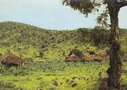 Sudan - Marra Mountain 1985 - Sudan