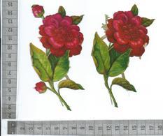 CHROMO DECOUPIS GAUFRÉE / DEUX BELLES FLEURS DE CAMELIA - Flowers