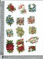 CHROMO DECOUPIS GAUFRÉE / LOT DE 13 PETITS MOTIFS DES FLEURS DIFFÉRENTS - Flowers