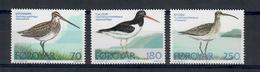ISOLE FAROER 1977 - FAUNA - UCCELLI  - SERIE COMPLETA - MNH** - Isole Faroer