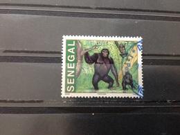 Senegal - Gorilla (75) 2002 - Senegal (1960-...)