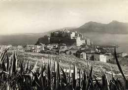 CPSM  Grand Format CALVI (Corse) Vue Generale  Recto  Verso - Calvi