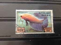 Benin - Aquariumvissen (400) 1999 - Benin – Dahomey (1960-...)