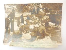 66 Photo LE PERTHUS NOUVEL AFFLUX DE REFUGIES - Autres Communes