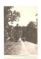 CPA Indochine Sur La Route De Luang Prabang - Cartes Postales